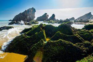 Tour du lịch Quảng Bình 3 ngày 2 đêm