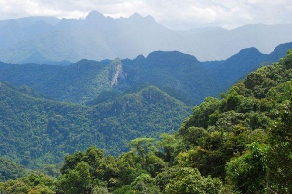 Đỉnh Núi U Bò Quảng Bình